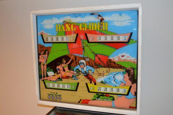 Hang Glider image 3