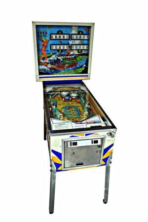 Surf Champ Pinball Cover1 300x450 - Surf Champ Pinball Machine