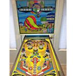 Hi-Flyer Pinball Machine