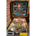 Jolly Roger Pinball Machine
